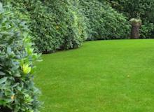 Tuin onderhoud cropped